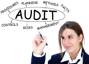 Mississippi Audit Services